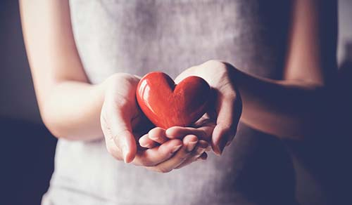 Person holding a heart